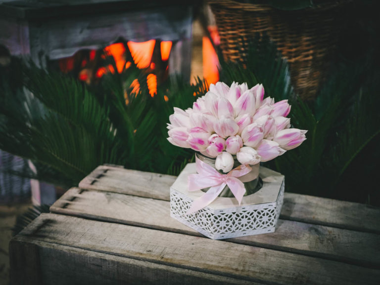 douceur_tulipes_blanches_rose_2