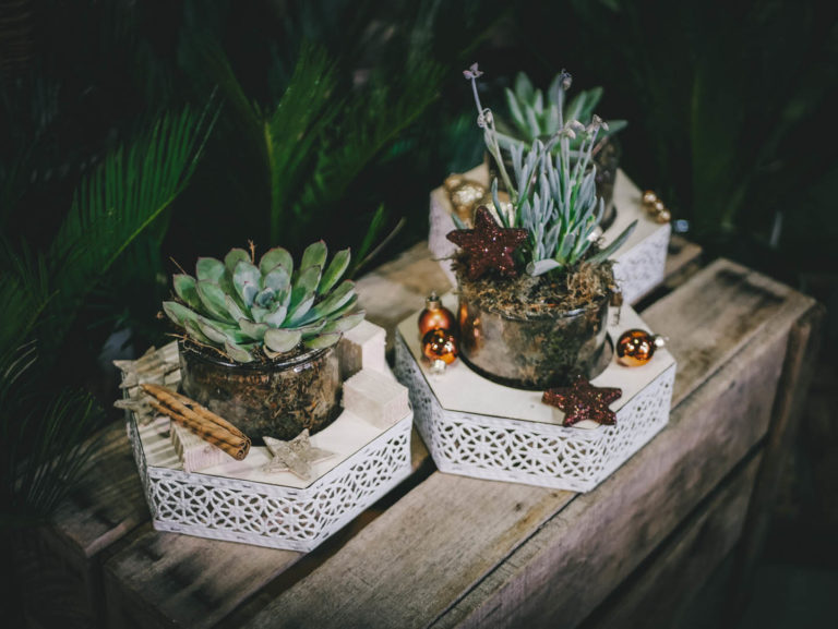 centres_tables_succulentes_3