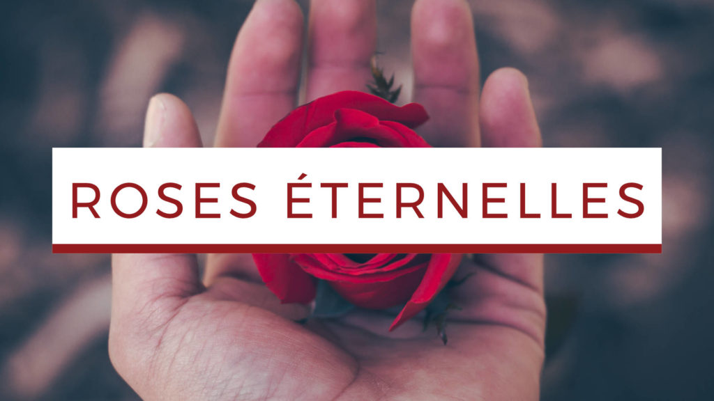 rose-eternelle-article-blog