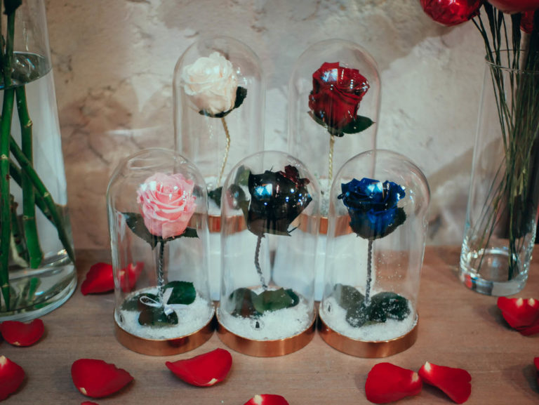 roses-cloches-couleurs-7