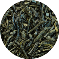 The-sencha-calida
